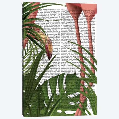 Peering Flamingo I Canvas Print #FNK390} by Fab Funky Canvas Art