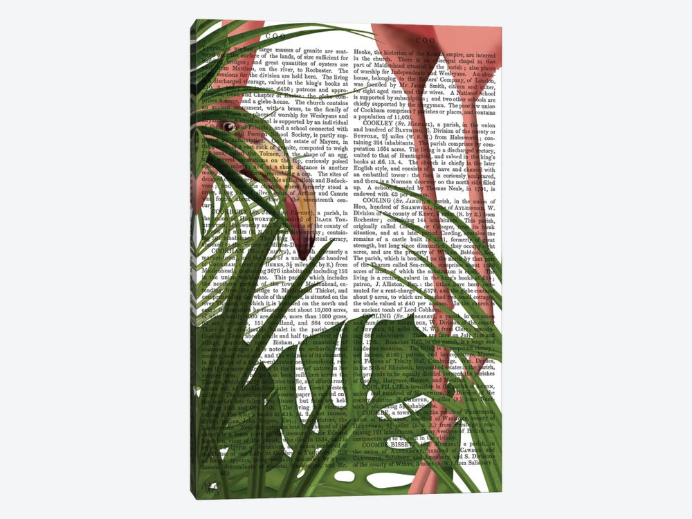 Peering Flamingo I by Fab Funky 1-piece Canvas Art Print