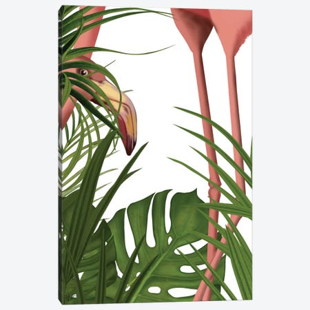 Peering Flamingo II Canvas Print #FNK391} by Fab Funky Canvas Wall Art