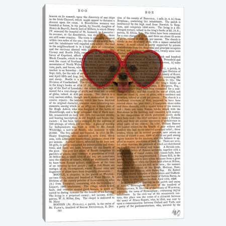Pomeranian And Heart Glasses I Canvas Print #FNK405} by Fab Funky Canvas Print