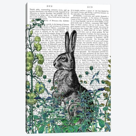 Rabbit In The Garden I Canvas Print #FNK418} by Fab Funky Canvas Print