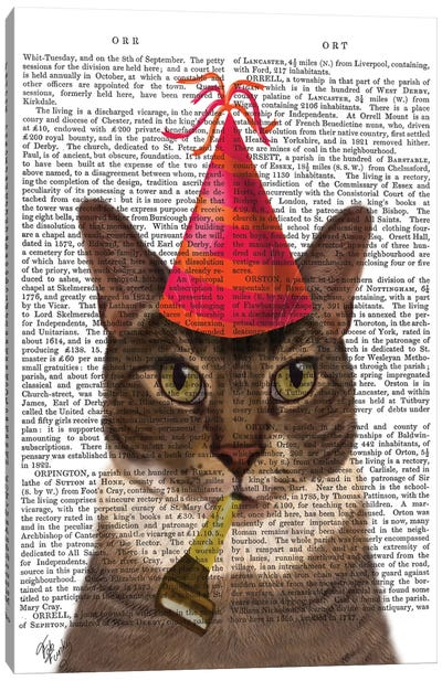 Tortoiseshell Cat With Party Hat I Canvas Print #FNK440