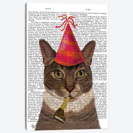 Tortoiseshell Cat With Party Hat I 3-Piece Canvas #FNK440} by Fab Funky Canvas Artwork