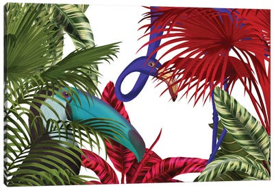 Toucan And Flamingo II Canvas Print #FNK442