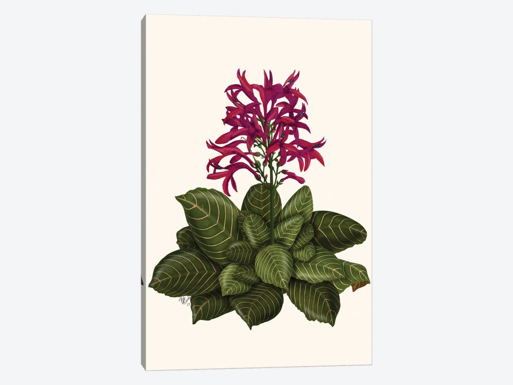 Tropical Flower II by Fab Funky 1-piece Canvas Art Print