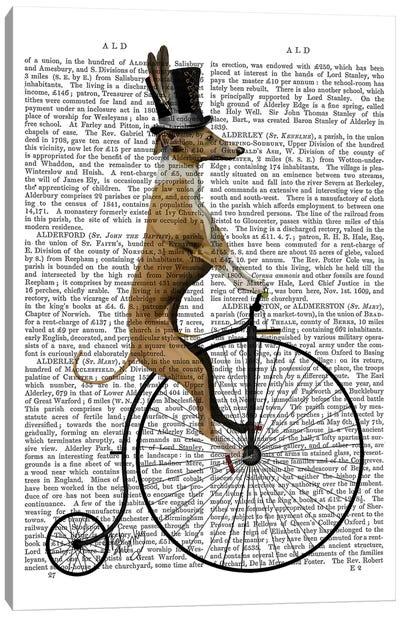 Greyhound On Black Penny Farthing Bike Canvas Art Print