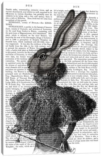 Victorian Rabbit Lady I Canvas Print #FNK466