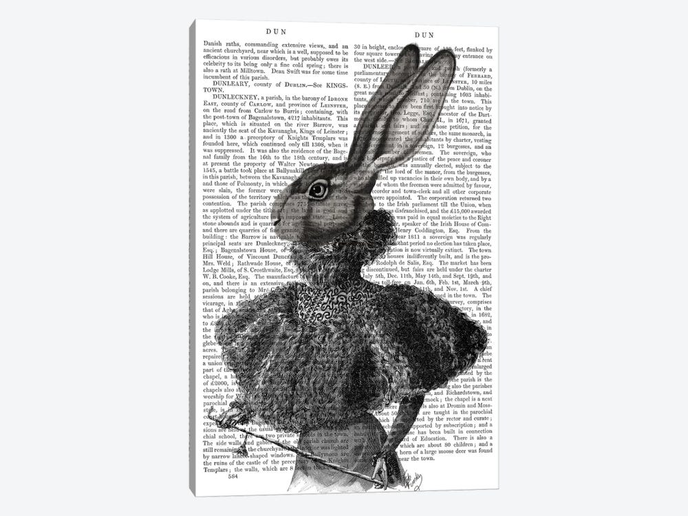 Victorian Rabbit Lady I by Fab Funky 1-piece Canvas Art Print
