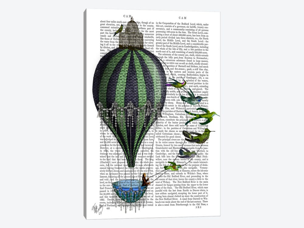 Hot Air Balloon And Birds by Fab Funky 1-piece Canvas Wall Art