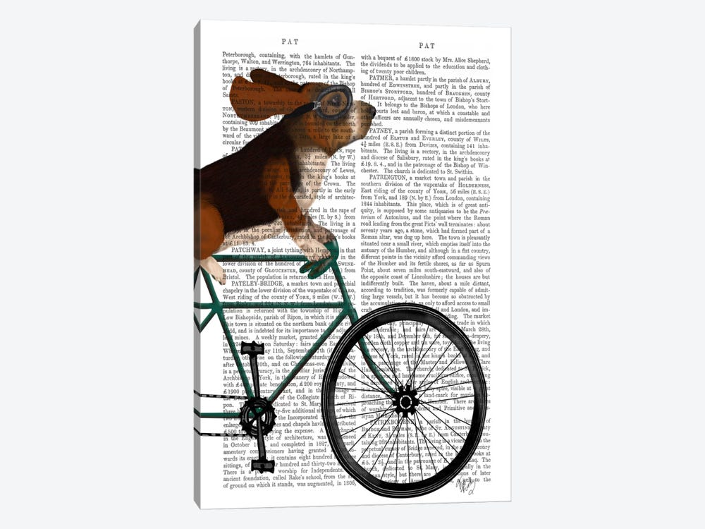 Basset Hound on Bicycle, Print BG by Fab Funky 1-piece Canvas Wall Art