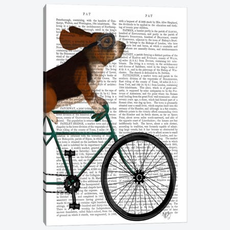 Basset Hound on Bicycle, Print BG 3-Piece Canvas #FNK498} by Fab Funky Art Print