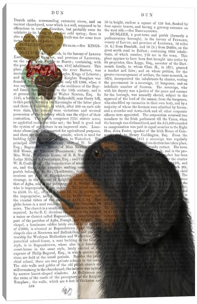 Bernese Ice Cream, Print BG Canvas Art Print
