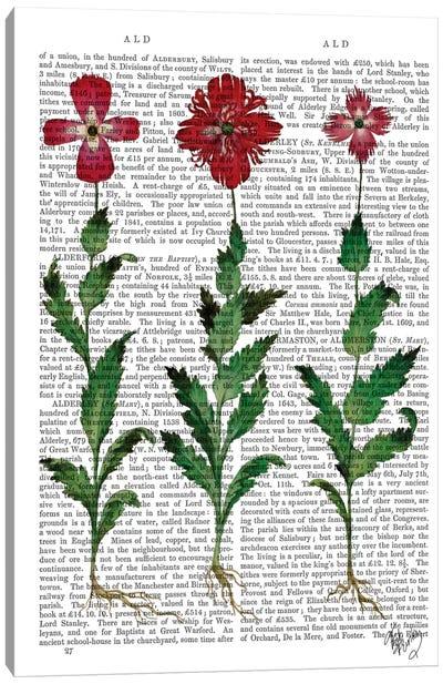 Italian Carnation I Canvas Print #FNK51