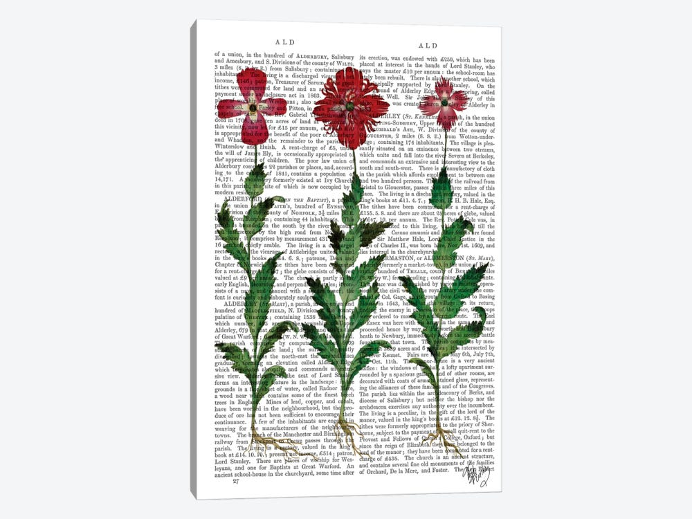 Italian Carnation I by Fab Funky 1-piece Canvas Wall Art