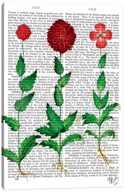 Italian Carnation II Canvas Print #FNK52