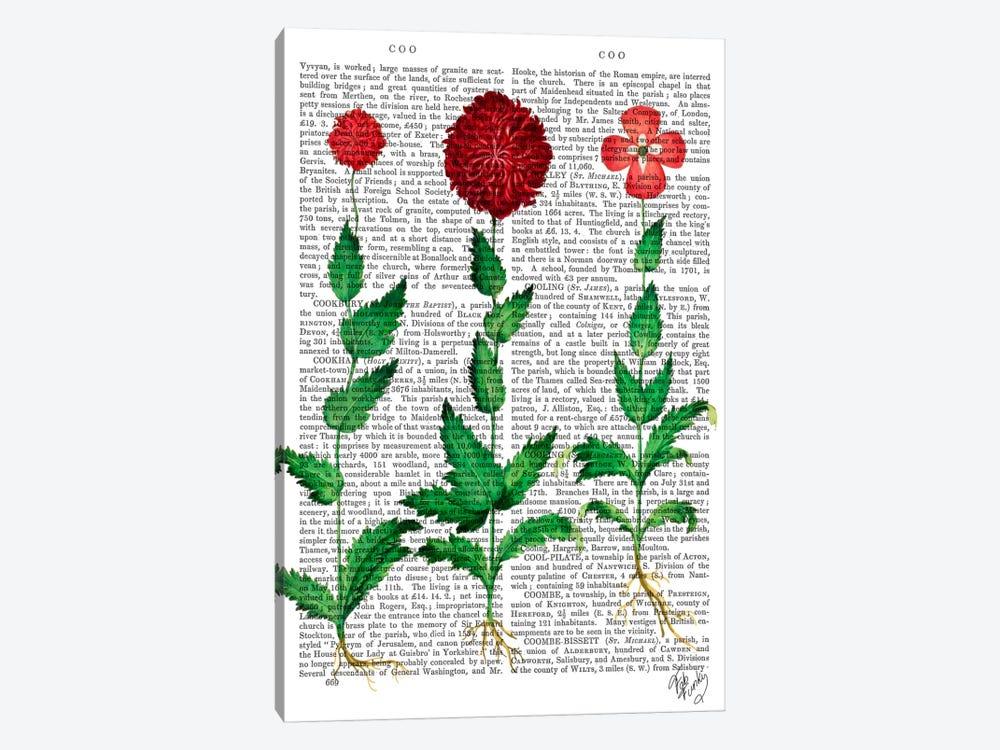 Italian Carnation II by Fab Funky 1-piece Canvas Art Print
