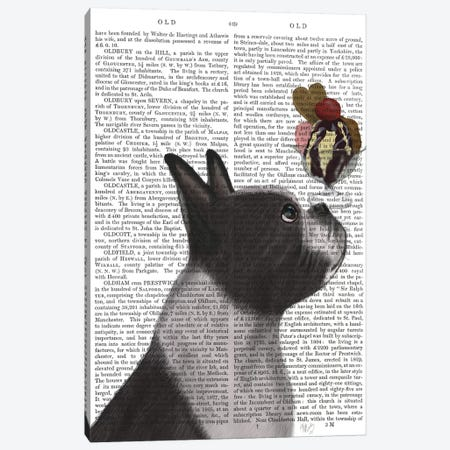 Boston Terrier Ice Cream, Print BG Canvas Print #FNK536} by Fab Funky Canvas Print