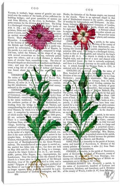 Italian Carnation III Canvas Print #FNK53
