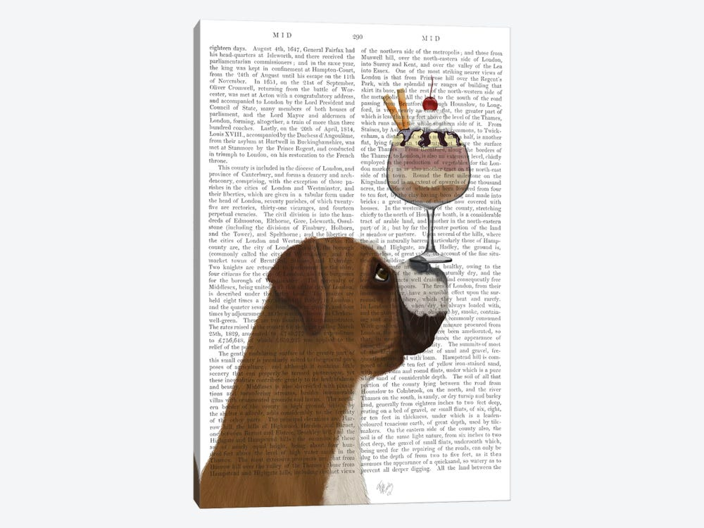 Boxer Ice Cream, Print BG by Fab Funky 1-piece Canvas Art