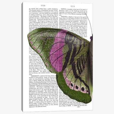 Butterfly in Green and Pink a Canvas Print #FNK547} by Fab Funky Canvas Art