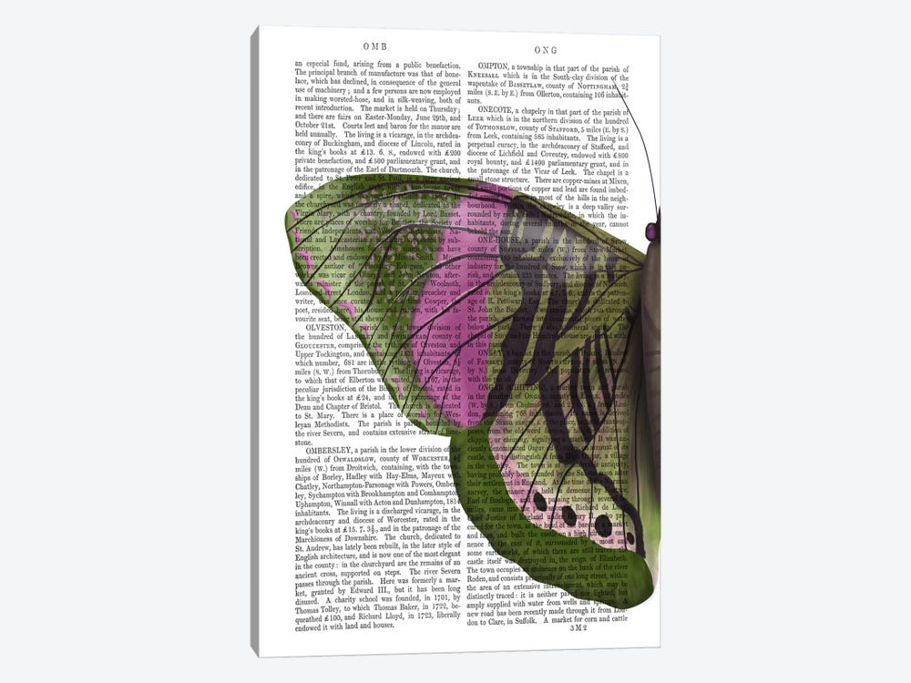 Butterfly in Green and Pink a by Fab Funky 1-piece Canvas Art Print