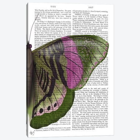 Butterfly in Green and Pink b Canvas Print #FNK548} by Fab Funky Canvas Art Print