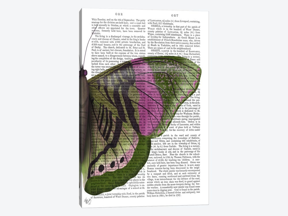 Butterfly in Green and Pink b by Fab Funky 1-piece Canvas Art