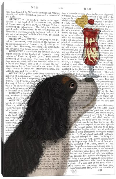 Cavalier King Charles, Black White, Ice Cream, Print BG Canvas Art Print