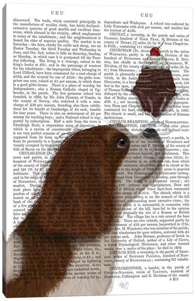 Cavalier King Charles, Brown White, Ice Cream, Print BG Canvas Art Print