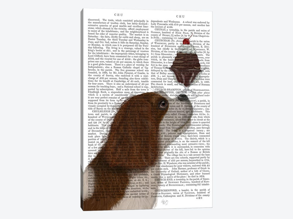 Cavalier King Charles, Brown White, Ice Cream, Print BG by Fab Funky 1-piece Canvas Art