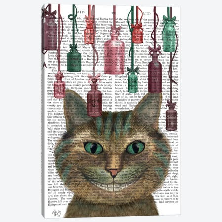 Cheshire Cat and Bottles, Print BG Canvas Print #FNK559} by Fab Funky Canvas Art