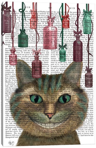 Cheshire Cat and Bottles, Print BG Canvas Art Print