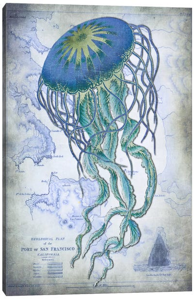 Jellyfish On Image Of Nautical Map Canvas Print #FNK55