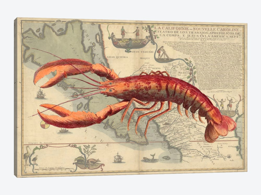 Lobster Print On Nautical Map by Fab Funky 1-piece Canvas Artwork