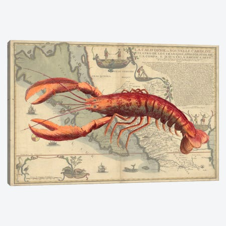 Lobster Print On Nautical Map Canvas Print #FNK57} by Fab Funky Art Print