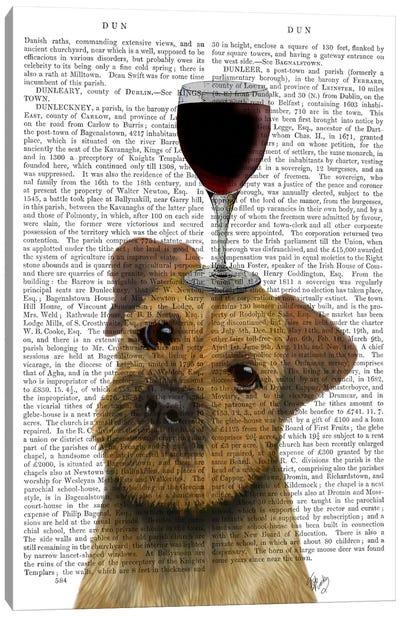 Dog Au Vin, Border Terrier, Print BG Canvas Art Print