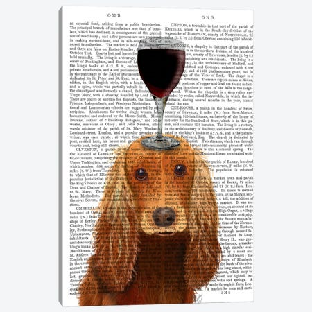 Dog Au Vin, Cocker Spaniel, Print BG Canvas Print #FNK605} by Fab Funky Art Print
