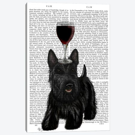 Dog Au Vin, Scottish Terrier, Print BG Canvas Print #FNK615} by Fab Funky Canvas Artwork