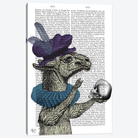 Drama Llama, Print BG Canvas Print #FNK619} by Fab Funky Art Print