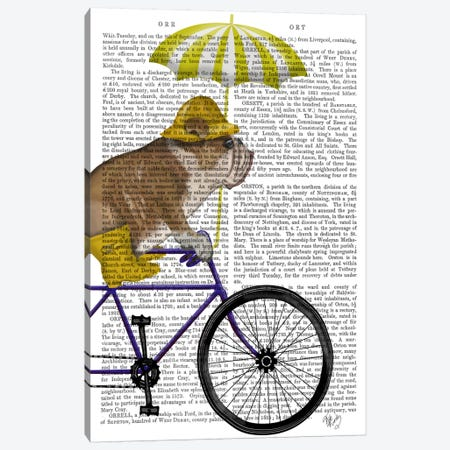 English Bulldog on Bicycle, Print BG Canvas Print #FNK623} by Fab Funky Canvas Wall Art