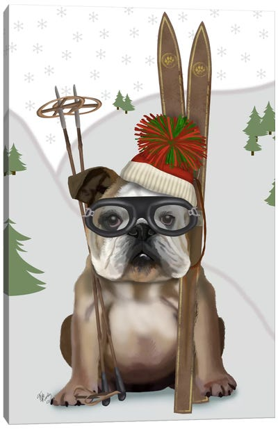 English Bulldog, Skiing Canvas Art Print