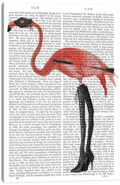 Flamingo with Kinky Boots, Print BG Canvas Art Print