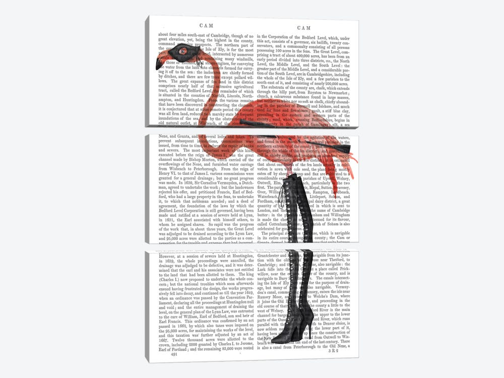 Flamingo with Kinky Boots, Print BG by Fab Funky 3-piece Canvas Print