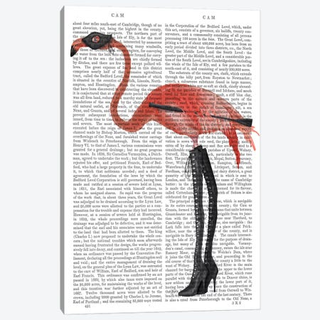 Flamingo with Kinky Boots, Print BG Canvas Print #FNK638} by Fab Funky Canvas Art Print