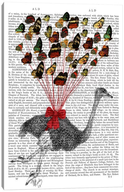 Ostrich Flying With Butterflies Canvas Print #FNK64