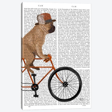 French Bulldog on Bicycle, Print BG Canvas Print #FNK652} by Fab Funky Canvas Art Print