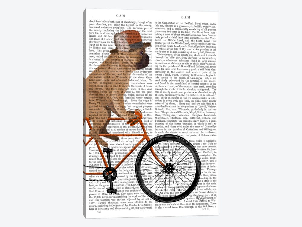 French Bulldog on Bicycle, Print BG by Fab Funky 1-piece Art Print