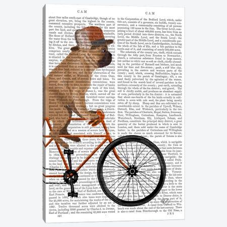 French Bulldog on Bicycle, Print BG Canvas Print #FNK652} by Fab Funky Canvas Art Print