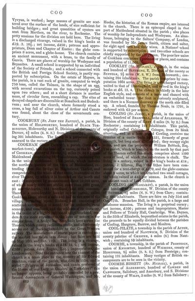 German Shorthaired Pointer Ice Cream, Print BG Canvas Art Print