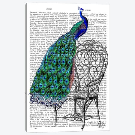 Peacock On Chair Canvas Print #FNK66} by Fab Funky Canvas Artwork
